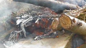 Vedträrök och brännskada stock video