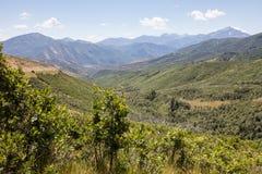 Veduta d'insieme del canyon americano della forcella Fotografia Stock Libera da Diritti