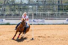 Veedrijfster en Paard in Concurrentie stock afbeelding