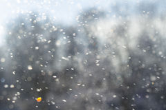 Veeg de sneeuw Stock Foto