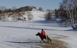 Veehoeder op sneeuwgebied Stock Foto's