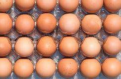 Veel bruine verse kippeneieren Hoogste mening Stock Foto