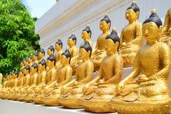 Veel de gouden beelden van Boedha Stock Foto