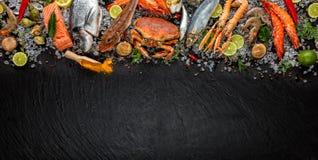 Veel die soort zeevruchten, op verpletterd ijs wordt gediend royalty-vrije stock foto's