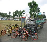 Veel fietsen bij de metropost die worden geparkeerd Wielen opgezet in verdiepingstribunes Een mengsel van wegfietsen die op hun e royalty-vrije stock afbeeldingen