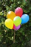 Veel gekleurd ballonsclose-up die op de achtergrond van groene bladeren hangen royalty-vrije stock afbeeldingen