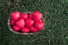 Veel hart in emmer Stock Foto's