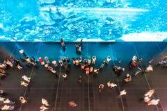 Mensen die op reusachtig aquarium in oceanarium letten. Royalty-vrije Stock Foto