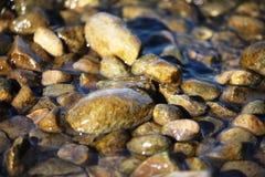 Veel Natte rotsen op een zandig strand Royalty-vrije Stock Afbeeldingen
