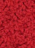 Veel rode bloemblaadjes die op een vloer leggen Royalty-vrije Stock Afbeelding