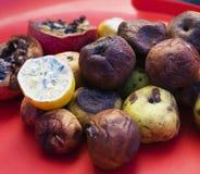 Veel roten vruchten De appelen, citroen, molden donker en gedroogde granaat op Het concept van de milieuomzetting Stock Afbeeldingen