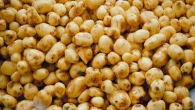 Veel schone die aardappels in een container bij een installatie worden opgeslagen stock videobeelden