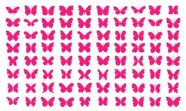 Veel vlinders - [80 Roze Vlinders] Stock Afbeelding