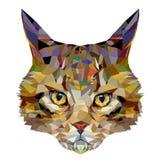 Veelhoekbeeld van een hoofd van een kat Stock Afbeeldingen