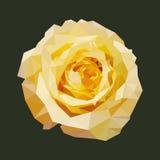 Veelhoekige geel nam, veelhoek geometrische bloem, geïsoleerde vector toe Royalty-vrije Stock Fotografie