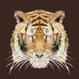 Veelhoekige tijger, veelhoek geometrisch dier, vector, illustratie Stock Afbeeldingen