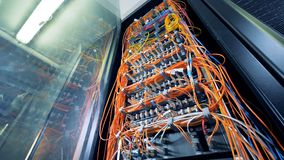 Veelkleurige kabels die servers in een datacenter verbinden stock footage