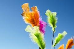 Veelkleurige Veren Royalty-vrije Stock Foto's