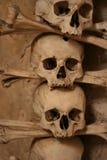 Veelvoudige schedels die in godsdienstig kunstwerk worden gevormd Stock Afbeeldingen