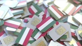 Veelvoudige Simkaarten met vlag van Hongarije Het Hongaarse mobiele telecommunicatie conceptuele 3D teruggeven royalty-vrije illustratie