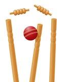 Veenmolbal in de wicket vectorillustratie die wordt gevangen Royalty-vrije Stock Afbeeldingen