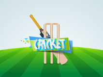 Veenmolknuppel met wicket stmps Royalty-vrije Stock Fotografie