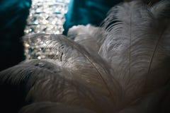 Veer van een vogel op een donkere macro als achtergrond Silhouet van een blauw en wit veer abstract artistiek beeld voor ontwerp Stock Afbeelding