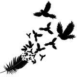 Veer van schets van de vogel de vectorillustratie Stock Afbeeldingen