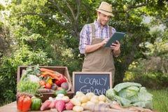 Veg продавать фермера органическое на рынке стоковая фотография