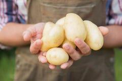 Veg продавать фермера органическое на рынке Стоковое фото RF