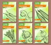 Vegetables banners set. Hand drawn fresh and natural vegetables. Hot pepper, champignon, corn, asparagus, garlic, onion.