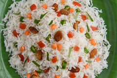 Veg biriyani Royalty Free Stock Photography