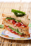 Veg club sandwitch Royalty Free Stock Image