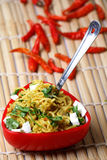 Veg Noodles. Original spicy schezwan Hakka Veg Noodles Royalty Free Stock Images