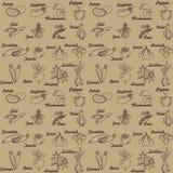 Veg Pattern. Assorted vegetables seamless pattern, vector Stock Photos