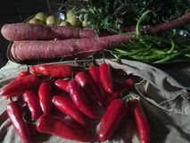Veg-rote Paprikarosakarotten gelbe lindgrüne Paprikas und Koriander, stockbilder