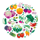 Veg Round. Composition with vegetables in a shape of circle Royalty Free Stock Photography