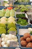 Veg stall with fresh veg. Choice of vegetables on a veg stall Royalty Free Stock Photos