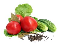 Veg still life. Fresh tomato and cucumber still life Royalty Free Stock Photo