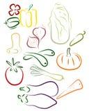 Veg stylisé illustration stock