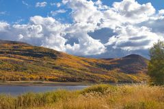 Vega State Park Fall Aspen Gold. Vega State Park near Collbran Colorado is a popular destination for outdoor sports. Not far from Grand Mesa National Forest stock image