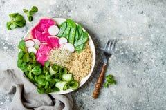Vegan, рецепт шара Будды вытрезвителя с квиноа, горохами снега, огурцом, редиской арбуза, hummus свеклы, семенем альфальфы пускае Стоковое фото RF