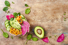 Vegan, рецепт шара Будды вытрезвителя с авокадоом, моркови, шпинат, нуты и редиски Взгляд сверху, плоское положение, космос экзем Стоковые Изображения RF