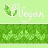 vegan Стоковые Изображения
