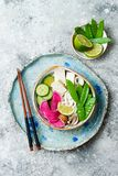 Vegan asian udon noodles soup bowl with ginger and mushrooms broth, tofu, snap peas, zucchini, watermelon radish and lime.  Stock Images