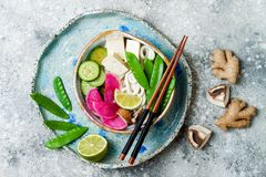 Vegan asian udon noodles soup bowl with ginger and mushrooms broth, tofu, snap peas, zucchini, watermelon radish and lime Stock Images