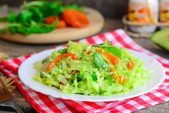 Vegan avocado coleslaw. Homemade coleslaw salad with avocado, dried apricots, arugula and sesame on a plate and on a wooden table Stock Photos
