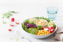 Vegan avocado sweet corn lunch bowl with hummus, red cabbage, radish and sprouts royalty free stock images