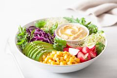 Vegan avocado sweet corn lunch bowl with hummus, red cabbage, radish and sprouts. Vegan avocado sweet corn lunch bowl with hummus, red cabbage, radish and spro royalty free stock images