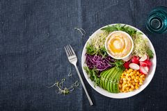 Vegan avocado sweet corn lunch bowl with hummus, red cabbage, radish and sprouts stock photo